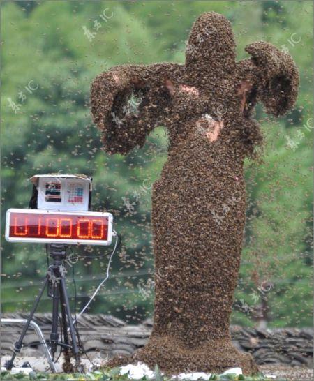 Соревнования пчеловодов в Китае (48 фото)