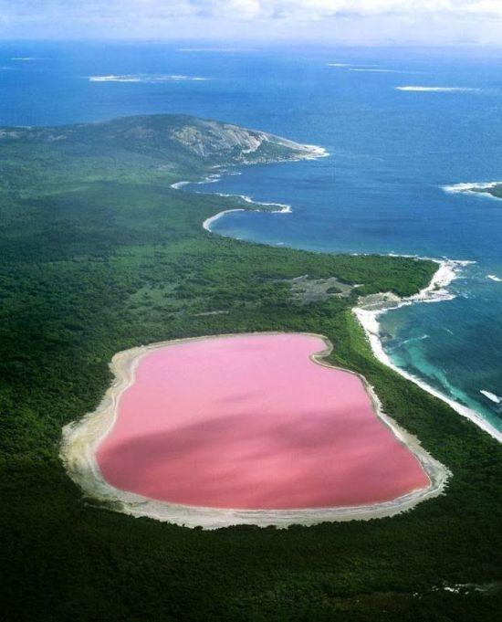 lake hillier – розовое озеро в Австралии (12 фото + 1 видео)