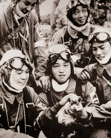 Лётчики и щенок